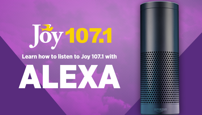 amazon echo joy